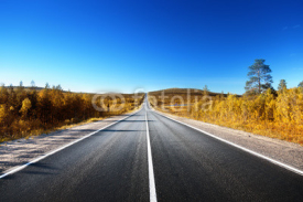 Fototapety road in north mountains