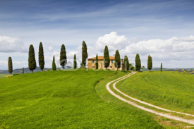 Naklejki Rural house with cypress trees around, Tuscany, Italy