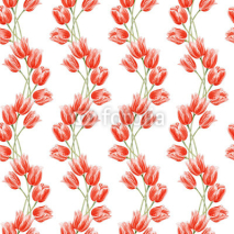 Fototapety Watercolor seamless floral background with red tulips