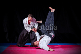 Fototapety Fight between two aikido fighters