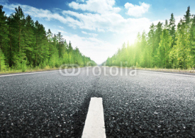 Obrazy i plakaty road in Russian forest