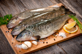 Fototapety Raw fish (brown trout)