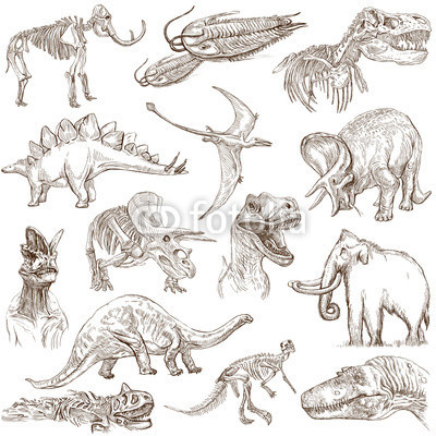 Fototapety Dinosaurs no.3 - an hand drawn illustrations, vector set