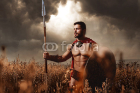 Warrior with sword and shield going in attack.